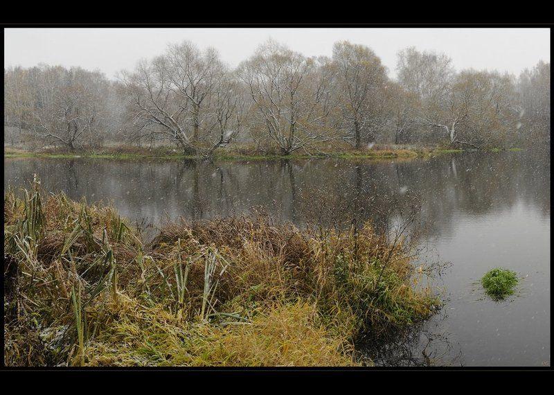 осень, снег, троицк 01.11.10photo preview