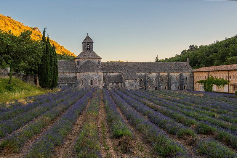 Поездка во Франциюphoto preview