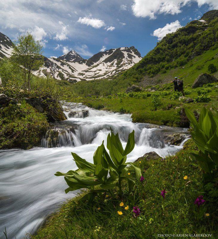 горы, предгорья,река,горная река,ручей, хребет, вершины, пики, озеро,ущелье,архыз,снег,скалы, холмы, долина, облака, путешествия, туризм, карачаево-черкесия, кабардино-балкария, северный кавказ АРХЫЗСКОЕ ЛЕТОphoto preview