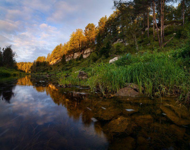 пейзаж, пейзажная съемка, утро, осень, свежесть,сентябрь, никон, landscape, morning, Пришла осенняя пораphoto preview