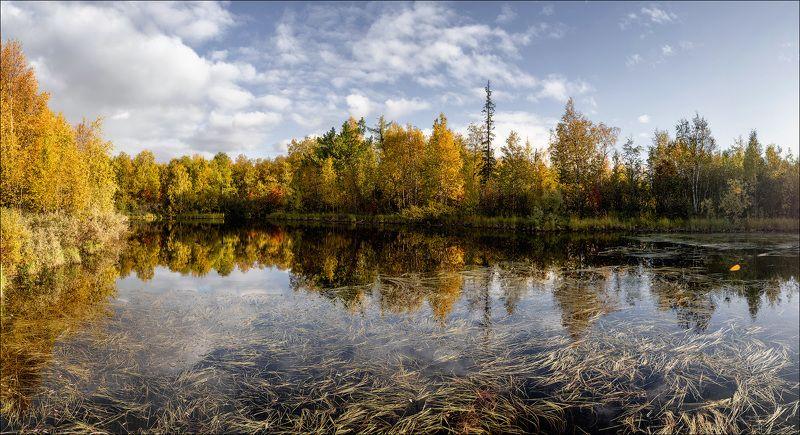 пейзаж,  природа,  лес,  тундра,  небо,  вода,  озеро,  осень Осенний пейзажикphoto preview