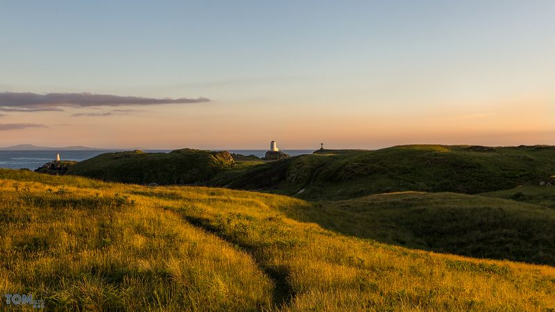 sheep wales landscape photography colour lighthouse sunset sun scenery view beautiful uk sky clouds \