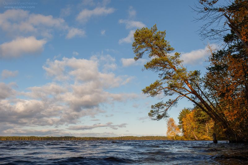 Озеро Нюхти и окрестностиphoto preview