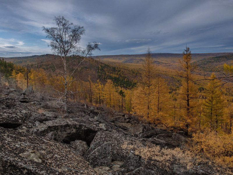 Осеннее Забайкальеphoto preview
