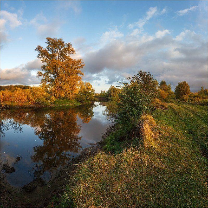 ласьва пермь река золотая осень жёлтый краски небо деревья Золотая осень на Ласьве.photo preview