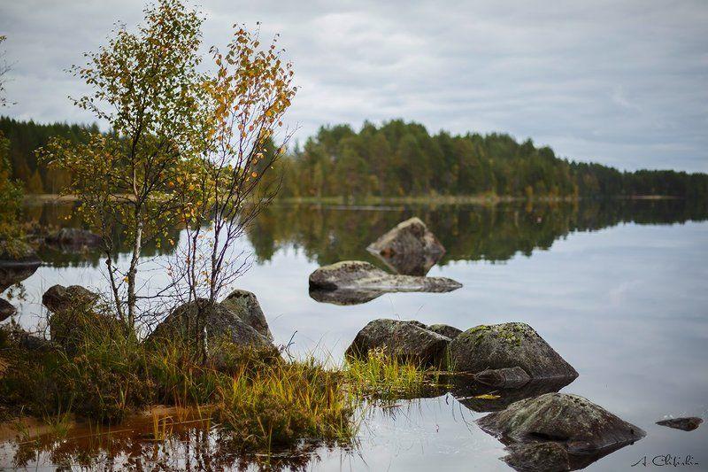 карелия, пейзаж, осень, октябрь, золото, закат, озеро Карельский этюдphoto preview