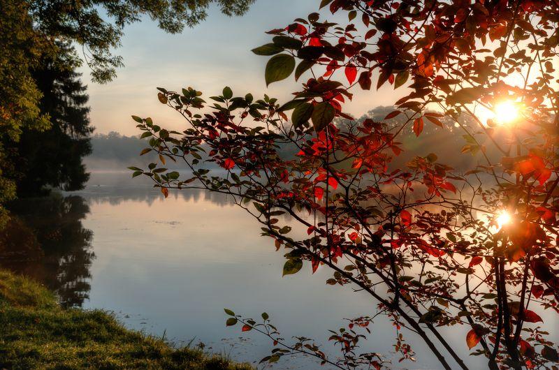про одно утро в Екатерининском парке Пушкинаphoto preview