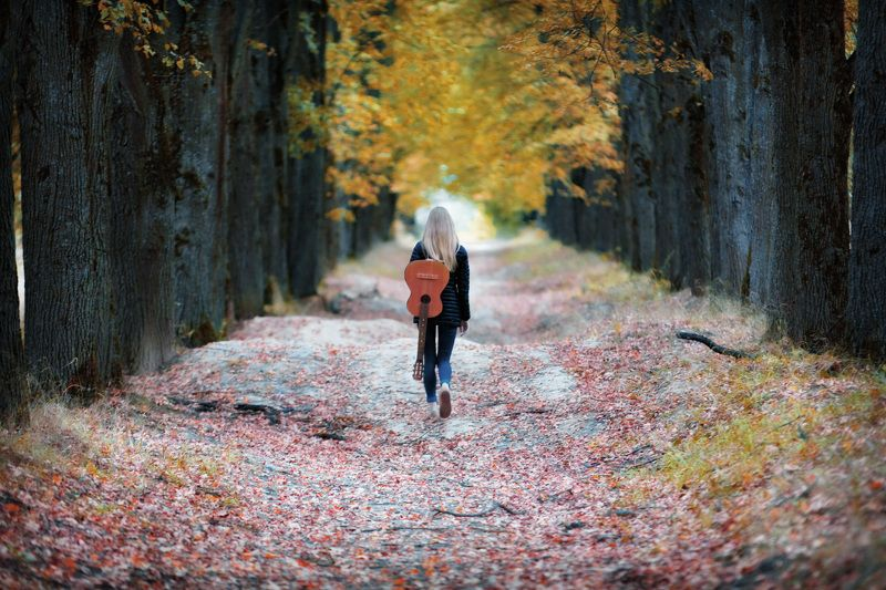 осень, ранняя, аллея, золотая, багряная, девушка, гитара Уходящее лето...photo preview