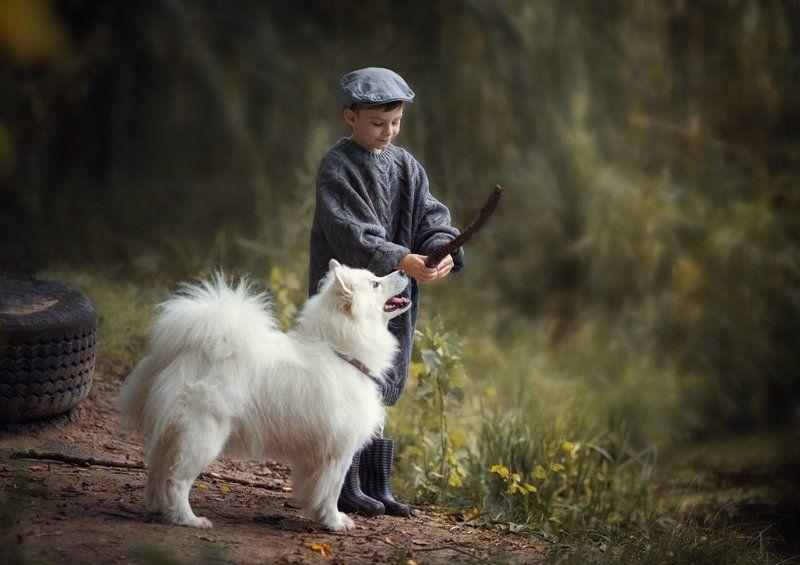 мальчик и собака, самоед Однажды в начале осени...photo preview