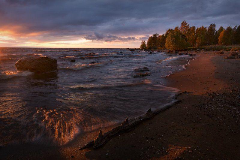 пейзаж, пейзажная съемка, вечер, октябрь, осень, свежесть, желтая листва, никон, landscape, рыбинское море, sunset, закат Бесноватый закатphoto preview