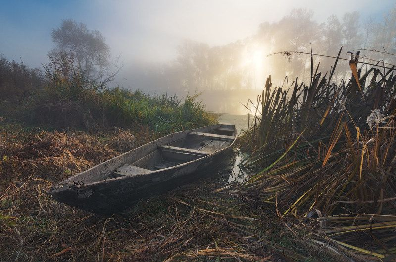 утро, рассвет, туман, солнце, река, пейзаж, лодка, пристанище, осень, камыш Пристанище осениphoto preview