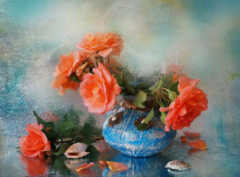 Розы способны тронуть любое сердцеphoto preview