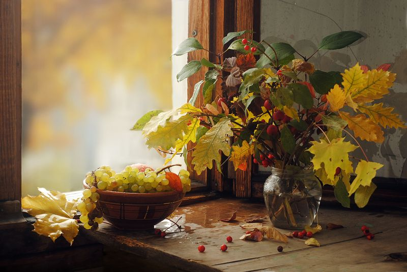 виноград ***photo preview
