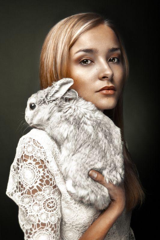 кролик, портрет, студия, ***photo preview
