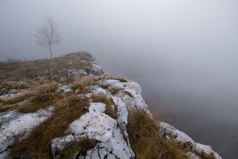 туман, скалы, осень, октябрь, одинокое дерево, иней Туман над обрывомphoto preview