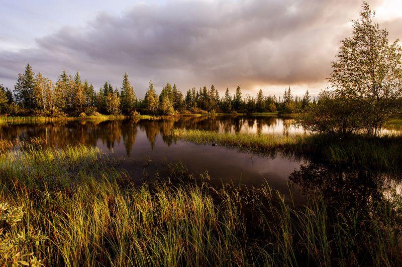 Осень. Север. photo preview