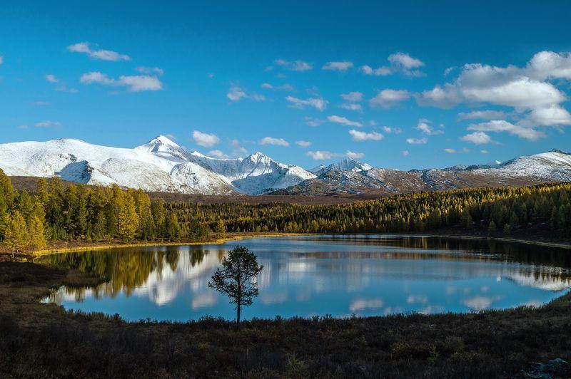 природа алтай пейзаж озеро киделю горы отражение осень Любимое озеро...photo preview