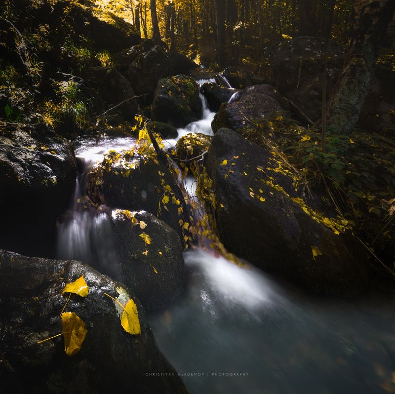autumn, fall, landscape, trees, forest, woods, bulgaria, colors, nature, fog, mist, rain, october, waterfall, creek, long exposure, woods, leaves WaterFall Dayphoto preview