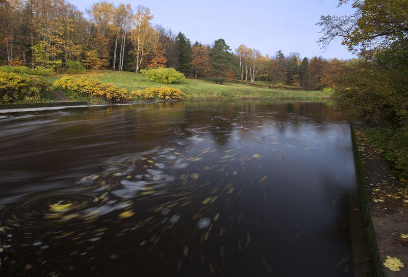 павловск октябрь Осень в Павловске.photo preview