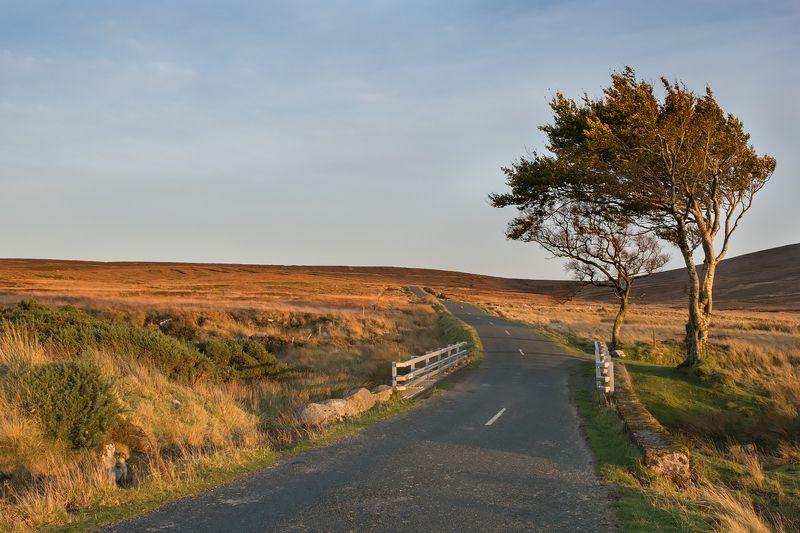 фототур, ирландия, закат Дорога в горыphoto preview