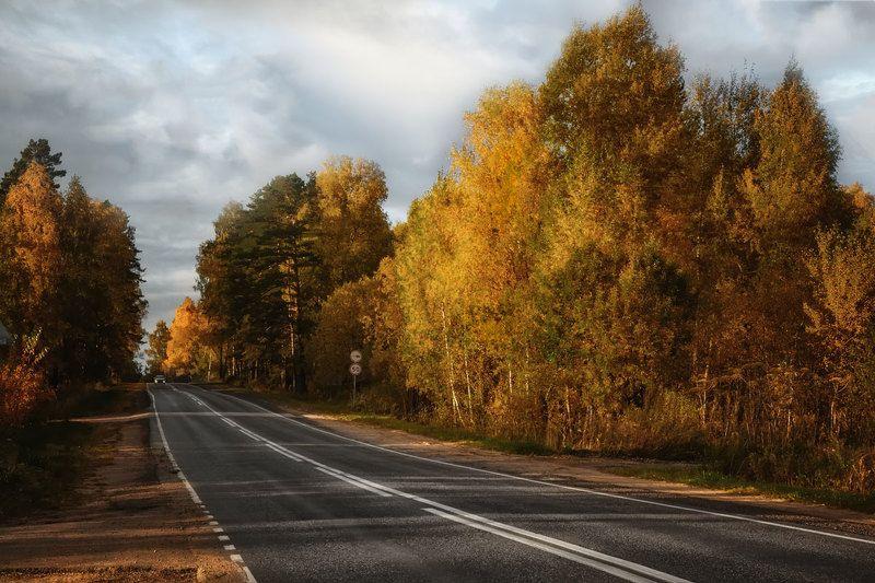 Осеннее...photo preview