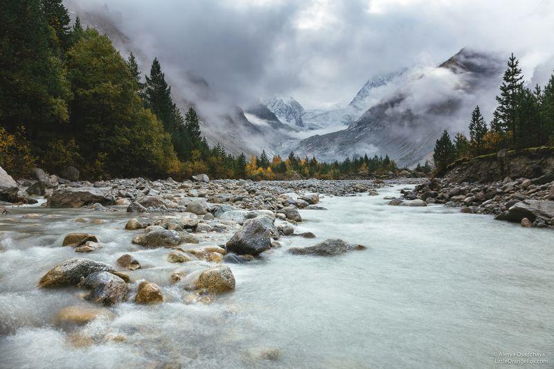 Кавказ, горы, туман, осень, река, Алания, Караугом Туманное утроphoto preview