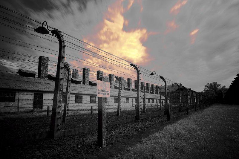 Auschwitz-Birkenauphoto preview