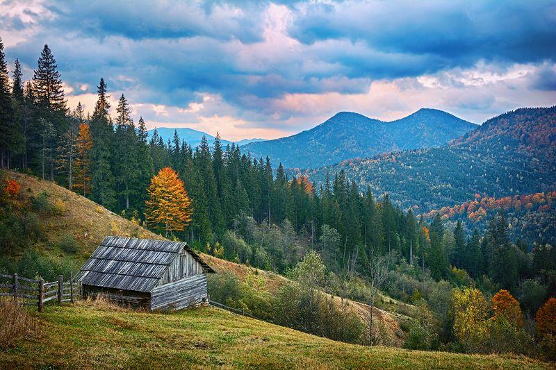осень, горы, карпаты, туризм, путешествия, пейзаж, природа Осень в горахphoto preview