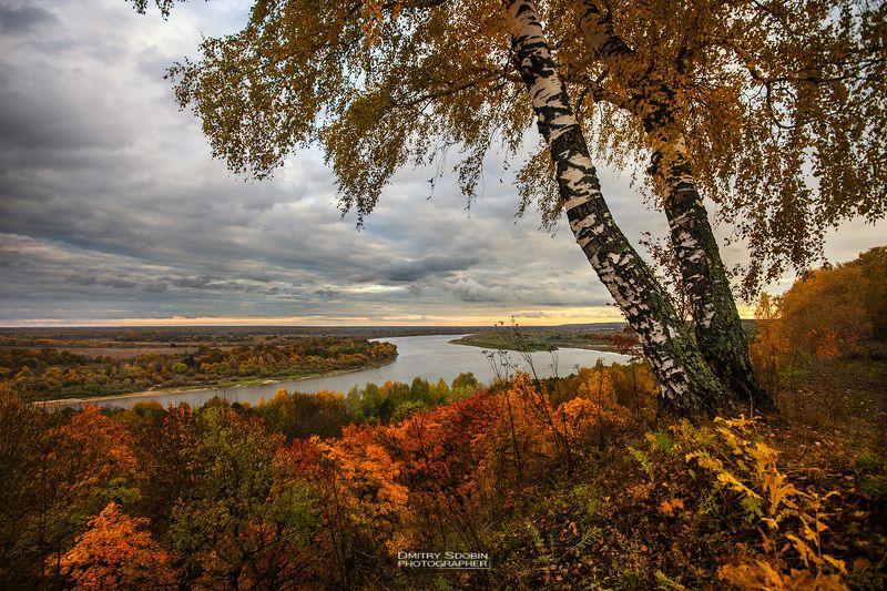 природа, пейзаж, осень, береза, река, небо, облака, landscape, nature, sky, riwer, clouds Осеньphoto preview