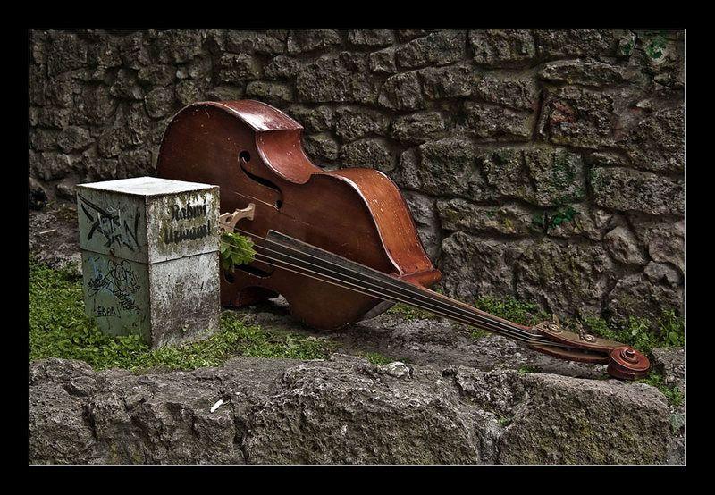 рига музыка ...эта музыка будет вечной..photo preview