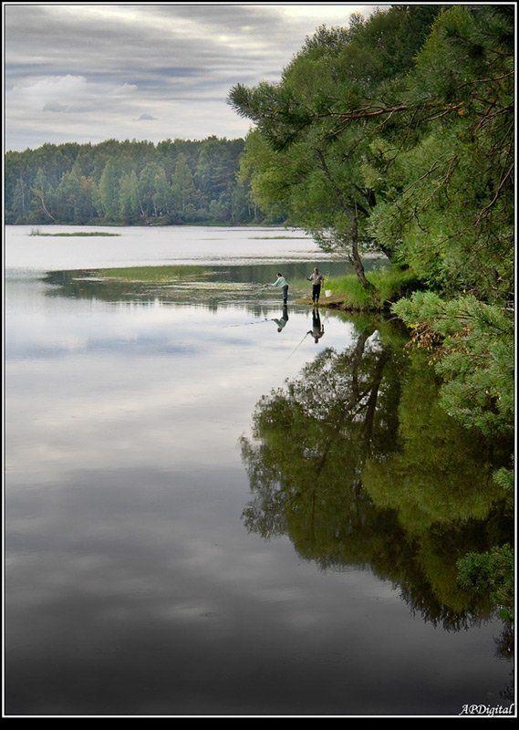 рыбалка залив лето Тихая заводьphoto preview