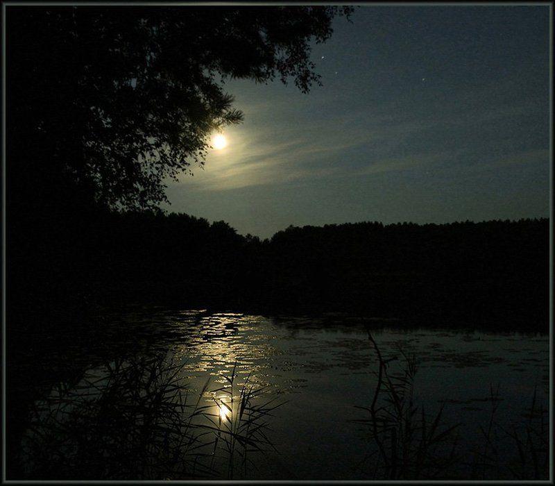 ночь Летняя ночьphoto preview