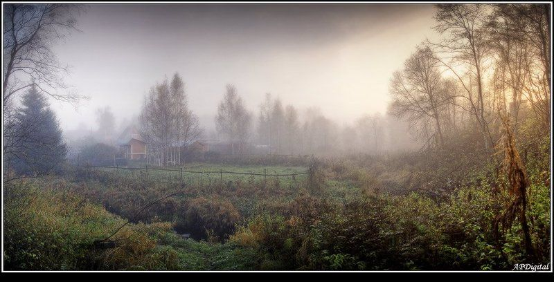 утро туман восход Туманный рассветphoto preview