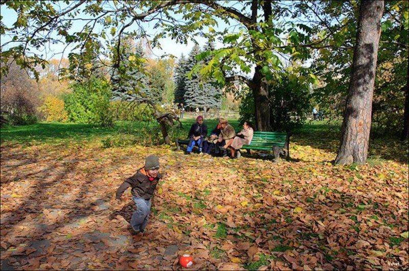 осень, листья, ребенок Молодыеphoto preview