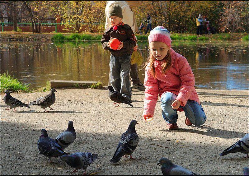 голуби, дети, парк Крошкиphoto preview