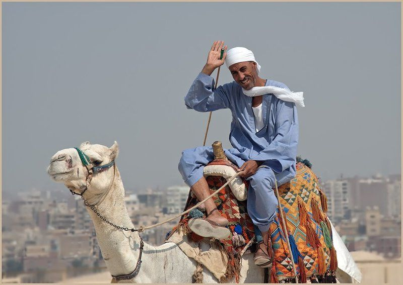 египет,каир,араб,верблюд,путешествие Привет из Каираphoto preview