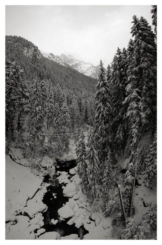 домбай, горы Снежный Домбай ... (ч\\б)photo preview