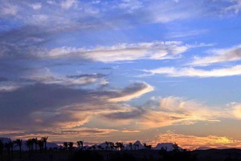 небо, египет, пальмы, облака, закат Небо Египтаphoto preview