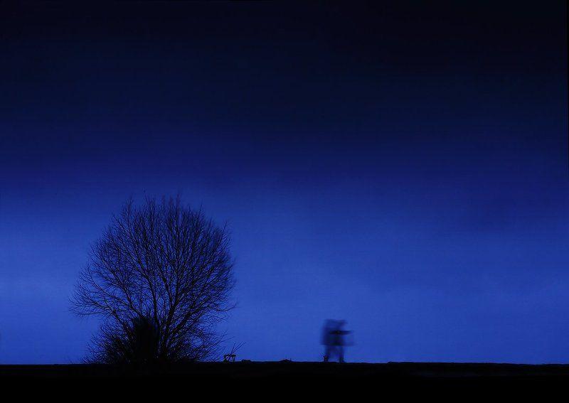вечерняя мелодияphoto preview