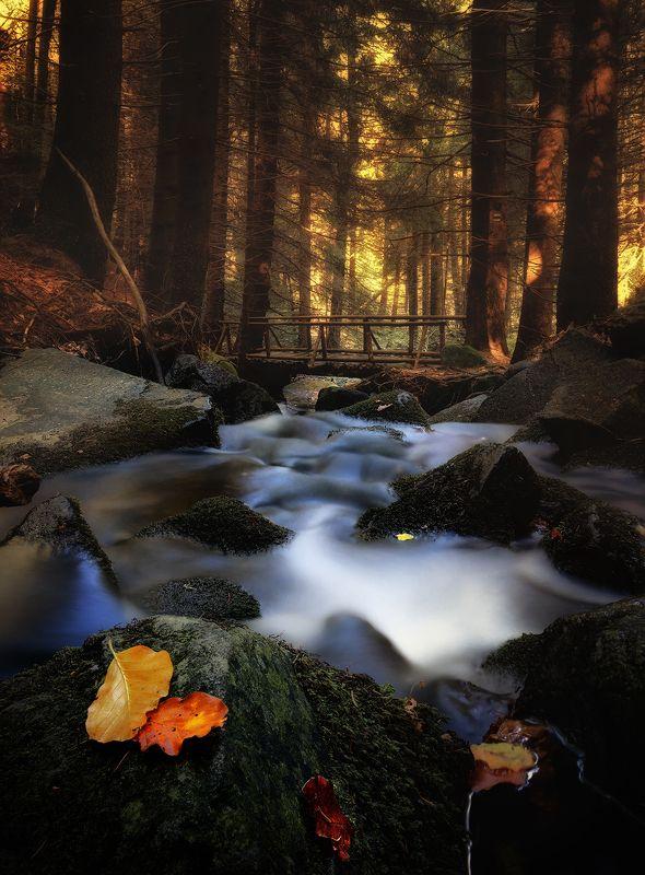 Autumn riverphoto preview