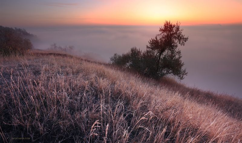 утро, слобожанщина Холодное утроphoto preview