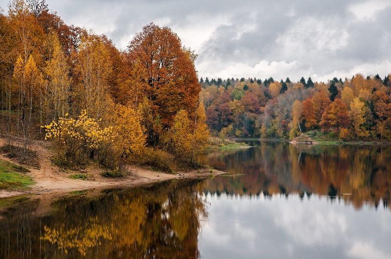 осень, лес, озеро, пасмурно, отражение Осенняя пораphoto preview