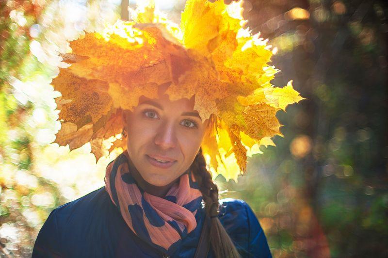 осень, бокэ, боке Autumnphoto preview