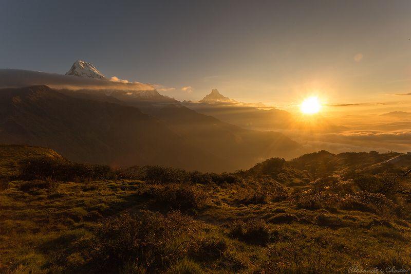 гималаи, непал, горы, рассвет, утро Гималайское утроphoto preview