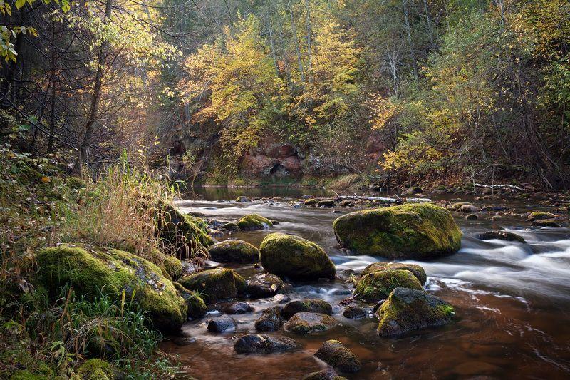 Октябрьский вечер на реке Аматаphoto preview