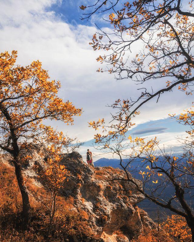 Осенним днёмphoto preview