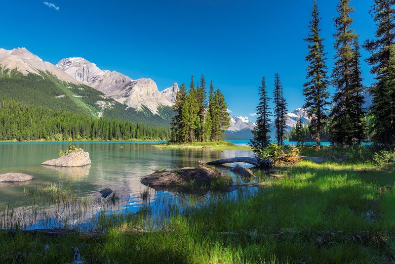 jasper national park, alberta, canada, spirit island,  maligne lake, banff, lake, nature, louise, moraine, landscape, scenery, mountain, travel, forest, rocky mountains Canadian Rockiesphoto preview