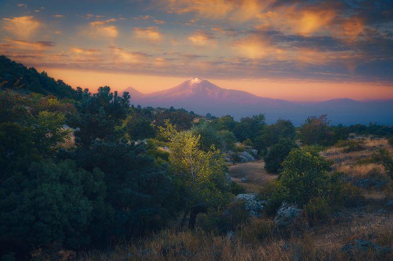 Арарат в утренних лучах Солнцаphoto preview