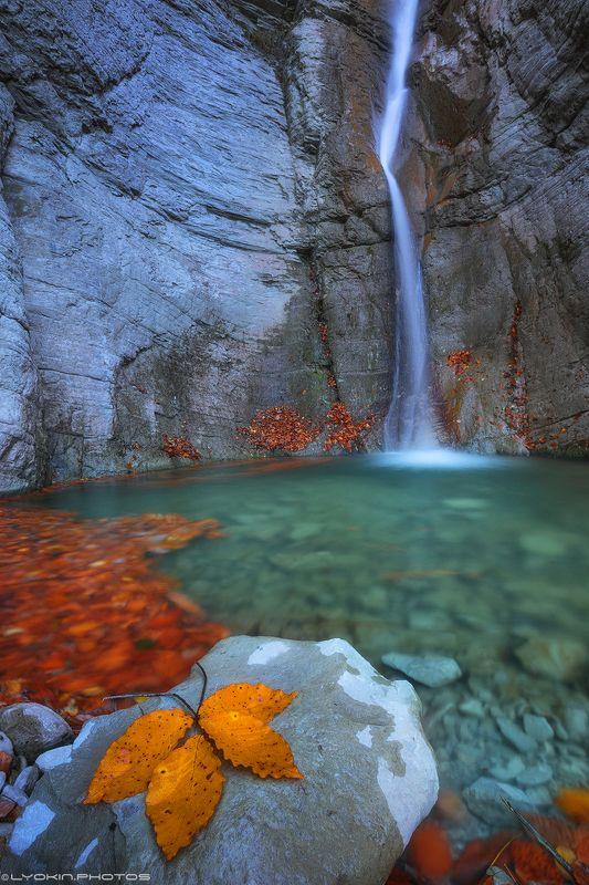 Осенняя лаконичностьphoto preview