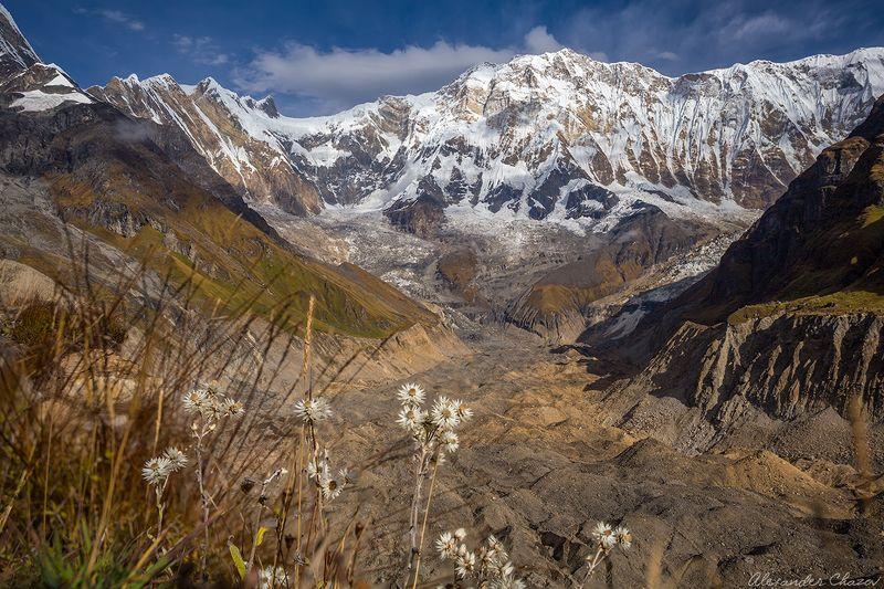 гималаи, непал, аннапурна, горы, вершина, облака, ледник Аннапурнаphoto preview